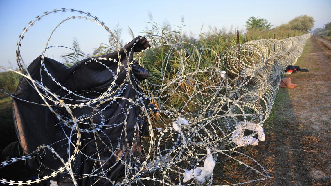 Забор на границе между Венгрией и Сербией