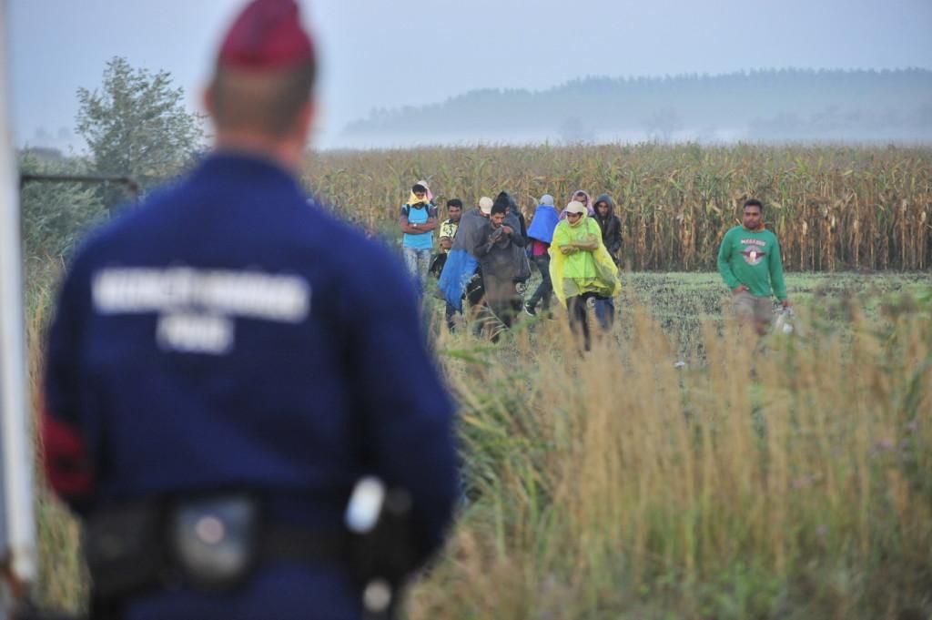 20150824 Röszke Menekültek migráns határ kerítés fotó:Koncz György