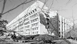 """ННЦ """"Інститут біології та медицини"""" КНУ"""